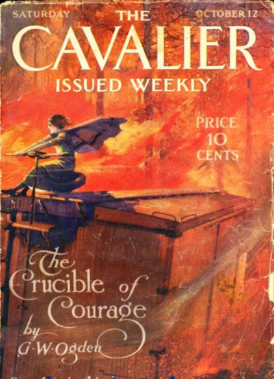 Essays On Bravery